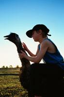 草原のエミュと外国人の男の子