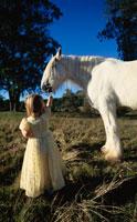 草原にいる馬と外国人の女の子 00454010367| 写真素材・ストックフォト・画像・イラスト素材|アマナイメージズ