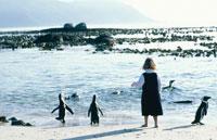 海岸で遊ぶ外国人の女の子とペンギンの群れ