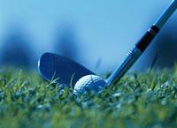 芝生の上のゴルフボールとヘッド