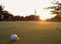 芝生上のゴルフボール(オレンジ色)