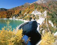 秋の黒部ダム・ 黒部湖  富山県