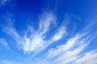 すじ雲 00545010163| 写真素材・ストックフォト・画像・イラスト素材|アマナイメージズ