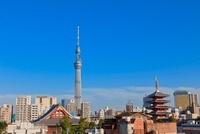 浅草寺と東京スカイツリー 00545012054  写真素材・ストックフォト・画像・イラスト素材 アマナイメージズ