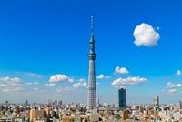 東京の町並みと東京スカイツリー