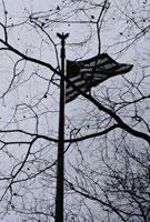 バッテリーパークの旗 ニューヨーク アメリカ