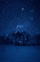 雪原とオリオン座   新潟県 00616000136  写真素材・ストックフォト・画像・イラスト素材 アマナイメージズ