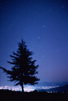 星空と夜景と1本の木 妙高村 新潟県
