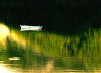 ボートと池の水面に映る風景(緑)