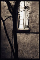 アパルトマンの窓
