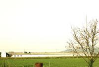 田園風景 00693011563| 写真素材・ストックフォト・画像・イラスト素材|アマナイメージズ