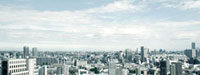 新宿の街並み