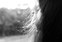 髪がなびく女性の横顔