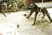 庭のテーブルと椅子とスズメ