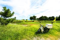 野原におかれたバイク