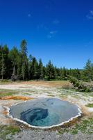 イエローストーン国立公園,温泉