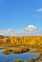 黄葉するスネークリバーとマウントモラン 00724012481  写真素材・ストックフォト・画像・イラスト素材 アマナイメージズ