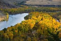 黄葉の中のスネークリバー 00724012489  写真素材・ストックフォト・画像・イラスト素材 アマナイメージズ