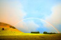 牧草地の丘と木々に架かる虹 00730010940| 写真素材・ストックフォト・画像・イラスト素材|アマナイメージズ