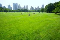芝生で寛ぐ人々とビル群