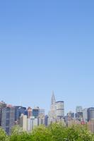 新緑とマンハッタン摩天楼と青空