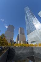 紅葉に囲まれる911メモリアル サウスプールと摩天楼