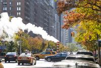 立ち昇るスティームと紅葉のパークアベニューの交通 00730012299| 写真素材・ストックフォト・画像・イラスト素材|アマナイメージズ