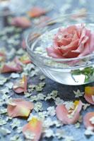 ガラスの器に浮かぶバラの花と花びら 00797010085| 写真素材・ストックフォト・画像・イラスト素材|アマナイメージズ