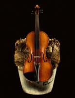 バイオリンと紹興酒の瓶