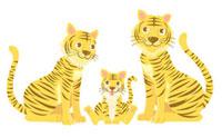 虎の家族 00832000023| 写真素材・ストックフォト・画像・イラスト素材|アマナイメージズ