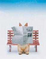 ウサギ(ネザーランド・ドワーフ) 00837010063| 写真素材・ストックフォト・画像・イラスト素材|アマナイメージズ