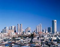 新宿ビル群 東京都
