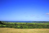 クローバーの丘から眺めるクッチャロ湖