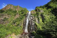 白銀の滝 01010022530| 写真素材・ストックフォト・画像・イラスト素材|アマナイメージズ