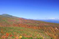 安達太良山の紅葉 01010026778| 写真素材・ストックフォト・画像・イラスト素材|アマナイメージズ