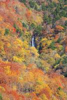 幕滝と紅葉 01010026877| 写真素材・ストックフォト・画像・イラスト素材|アマナイメージズ