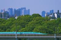 新宿・池袋をバックに東京を走る東北新幹線E5系はやぶさ