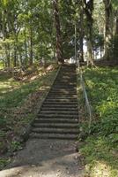 世界文化遺産の山宮浅間神社の遥拝所に向かう石段 01071012310| 写真素材・ストックフォト・画像・イラスト素材|アマナイメージズ