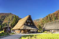 菅沼集落 01072026425| 写真素材・ストックフォト・画像・イラスト素材|アマナイメージズ