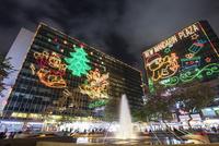 市政局百週年紀念花園のクリスマスイルミネーション 01072027000| 写真素材・ストックフォト・画像・イラスト素材|アマナイメージズ