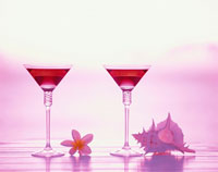 貝と2杯のカクテルグラス 与論島 鹿児島県 01075006292| 写真素材・ストックフォト・画像・イラスト素材|アマナイメージズ