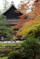 南禅寺南禅院紅葉