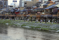 鴨川七夕祭り
