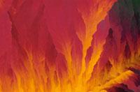 硫黄の結晶 顕微鏡写真