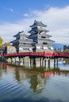 松本城の埋橋とハクチョウ