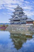 松本城と内堀のハクチョウ 01109092566| 写真素材・ストックフォト・画像・イラスト素材|アマナイメージズ