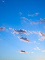 夕空の雲 01143045140| 写真素材・ストックフォト・画像・イラスト素材|アマナイメージズ