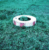 草原に置かれたタイヤ遊具