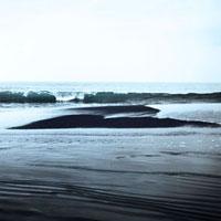 砂州に寄せる波