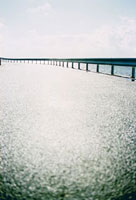 雨上がりの防波堤道路